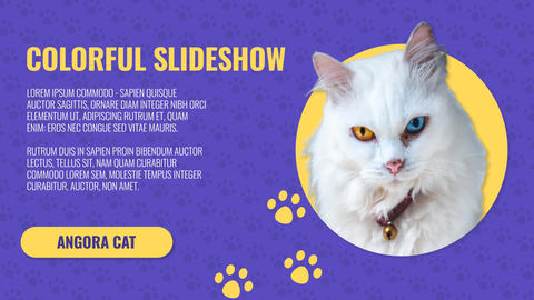 Animal Fresh Slideshow After Effects Template
