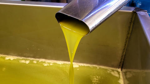 Olive Oil mill industry,extraction machine process,extra virgin oil liquid flow Live Action