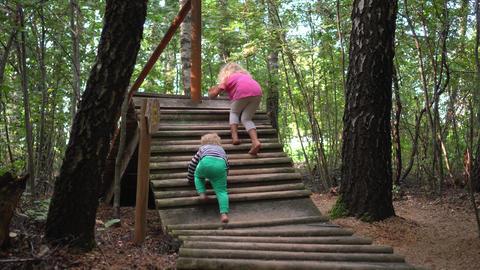 Kids walk through wooden sticks bridge. Barefoot healthy path. Foot massage path Live Action