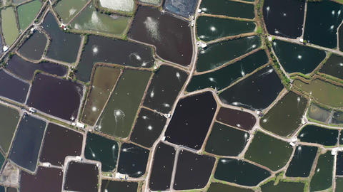 aerial view of fish farm and coast . Taiwan Live影片