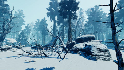 Winter Nature Park Animation
