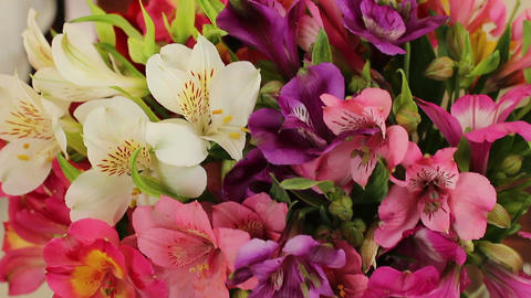 Close-up bouquet of colorful beautiful flowers, summer freshness Footage