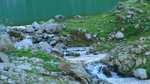 Beginning of clear mountain stream, water flowing between rocks Footage