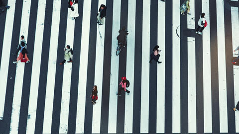 4K Tokyo City Intersection Timelapse Transportation People Cityscape Day Live Action