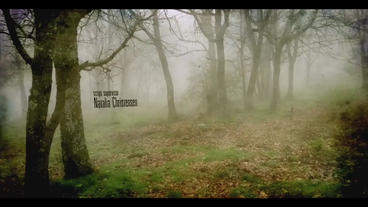 MISTY FOREST 2 ( cinematic mystery opening end titles ) After Effects Template