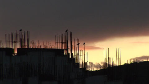 crows playing over an unfinished building Footage