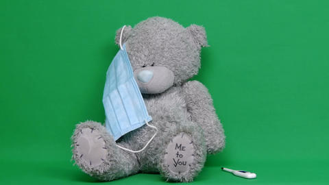 Ill teddy bear. An ill teddy bear wear a medical mask on it face. Chroma key Live Action