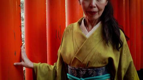 Elegant Japanese woman in Kyoto Japan Live Action