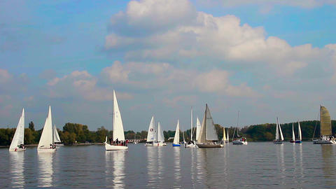 Many sailboats and yachts gathered for regatta, sport, race Footage