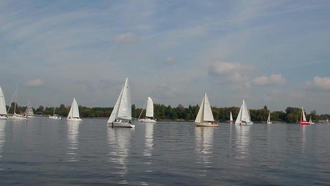 Racing yachts float in open sea, outdoor activities, sport Footage