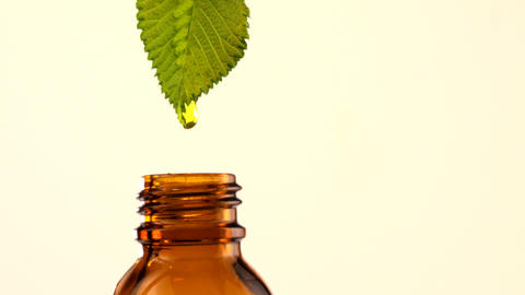 Brown glass bottles with drops Essential liquid drop on green leaf Live Action