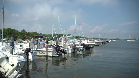 Several luxury sailboats in a marina Footage