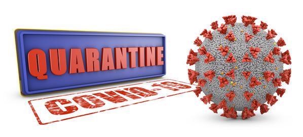 The Stamp Quarantine Photo