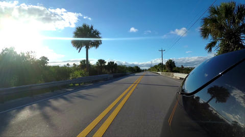 Driving down a road through the Everglades - Florida Road - first person view Live Action