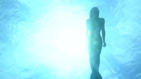 水面を泳ぐ人魚 逆光 ライブ動画