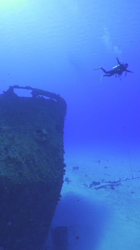 Beautiful underwater vertical video of scuba diving in Rota Island, Northern Mariana Islands Live Action