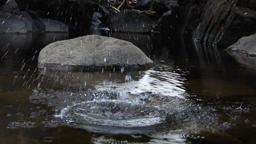 Rock thrown on the calm water of mountain pond Live Action