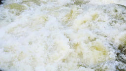 Powerful steam of flowing mountain river water Live Action