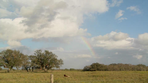 Time lapse of a rainbow over a farm field Stock Video Footage