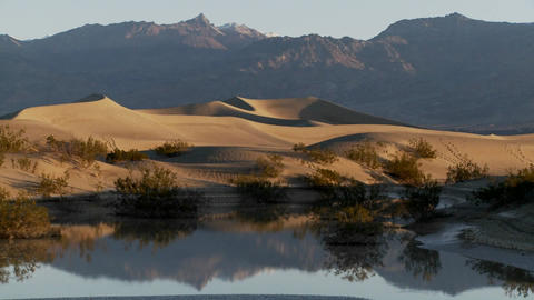 Time lapse over an oasis in Death Valley Stock Video Footage