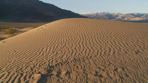 A pan across arid desert dunes at an oasis Stock Video Footage