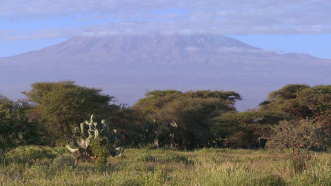 Beautiful time lapse shot of Mt. Kilimanjaro in Tanzania, East Africa at dawn Footage