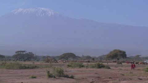 Masai warriors walk in in front of Mt. Kilimanjaro in Tanzania, East Africa Footage