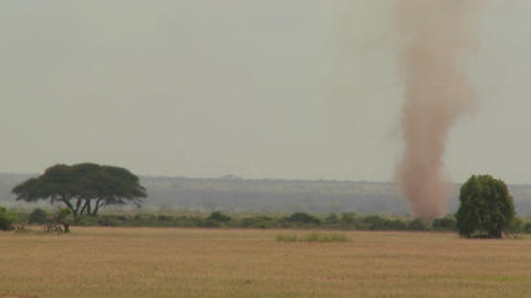 A dust devil dust tornado blows across the plains of Africa Stock Video Footage