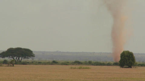A dust devil dust tornado blows across the plains of Africa Footage