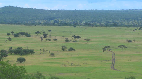 A safari jeep travels on a distant road in Africa Stock Video Footage