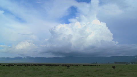 A wide shot of spectacular cloud formations on the plains... Stock Video Footage