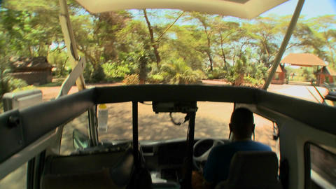 POV shot driving in an open topped safari vehicle through... Stock Video Footage