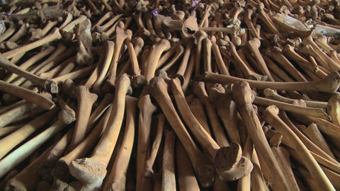 Hundreds of leg bones line the catacombs of a church following the Rwandan genocide Footage