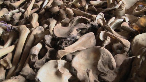 Bones lie in display in a church in Rwanda following the... Stock Video Footage
