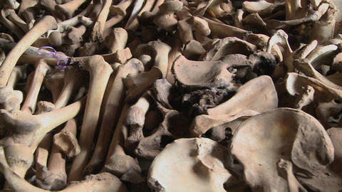 Bones lie in display in a church in Rwanda following the genocide there Footage
