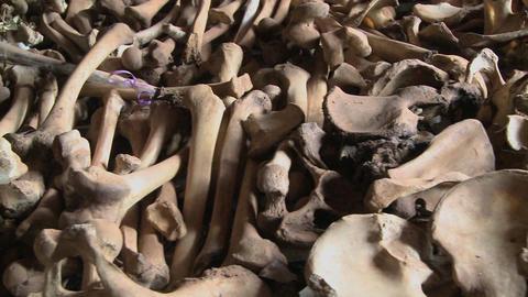 Bones lie in display in a church in Rwanda following the... Stock Video Footage