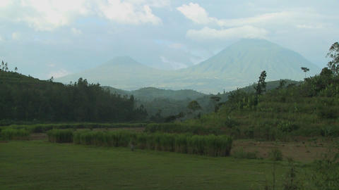 Establishing shot of the Virunga Volcanos on the Rwanda Congo border Footage