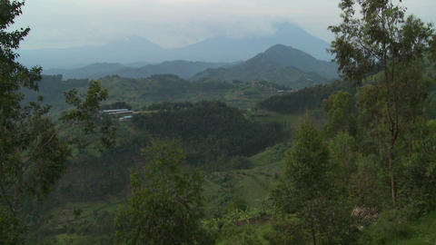 The lush landscapes surrounding the Virunga volcanos on the Congo Rwanda border Footage