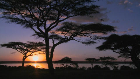 Gorgeous and majestic shot of sunrise on the African... Stock Video Footage