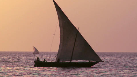 A beautiful shot of a dhow sailboat sailing at sunset in Zanzibar Footage
