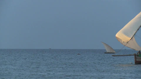 A dhow pirate ship sails past the coast of Zanzibar Stock Video Footage