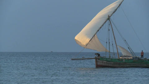 A dhow pirate ship sails past the coast of Zanzibar Footage