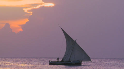 A beautiful shot of a dhow sailboat sailing along the coast of Zanzibar at sunset Footage