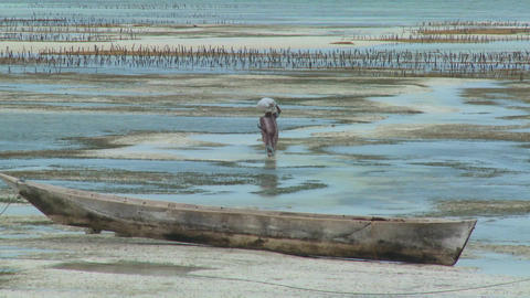 A woman walks through the tide with a load on her head in Zanzibar Footage
