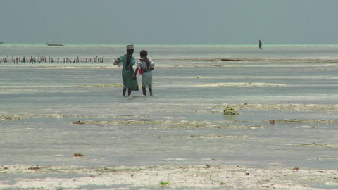 A young girl leads her sister into a tidal bay Stock Video Footage
