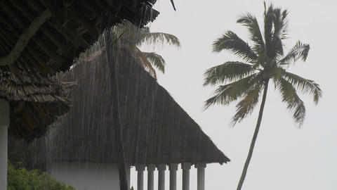 Rain falls heavily at a tropical beach resort with palms... Stock Video Footage