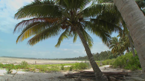 Pan across a perfect tropical beach on a tropical island paradise Live Action