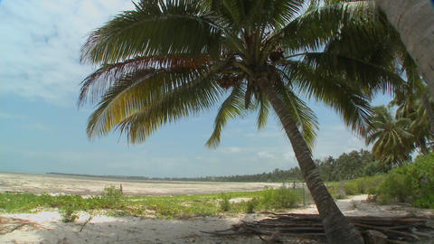 Pan across a perfect tropical beach on a tropical island... Stock Video Footage