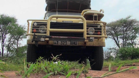 A safari vehicle drives directly over the camera in Africa Footage