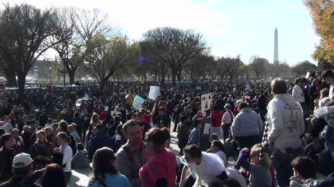 Huge crowds of protestors gather in Washington D.C Footage